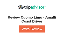 Tripadvisor write review